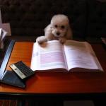 21book_start00